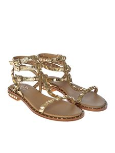 Ash - Golden Poison sandals