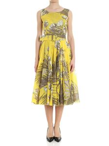 Samantha Sung - Yellow Aster floral print dress