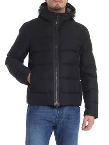 Fay - Black hooded down jacket