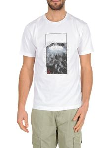 Stone Island - White t-shirt with Graphic Tree print