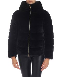 Herno - Eco-fur coat in blue with crater collar