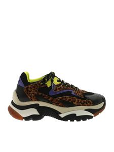 Ash - Addict sneakers animal print