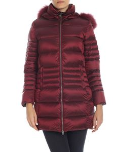 Colmar - Place long down jacket in burgundy color