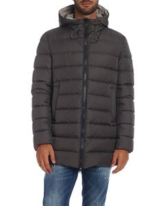 Herno - Down jacket in dark gray with hood