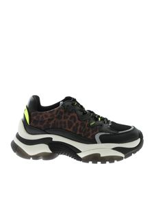 Ash - Addiction sneakers in black and animal print