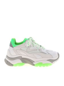 Ash - Addict sneakers in white and green
