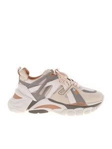 Ash - Flash leather sneakers in beige and grey