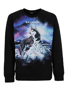 Balmain - Husky print cotton sweatshirt in black