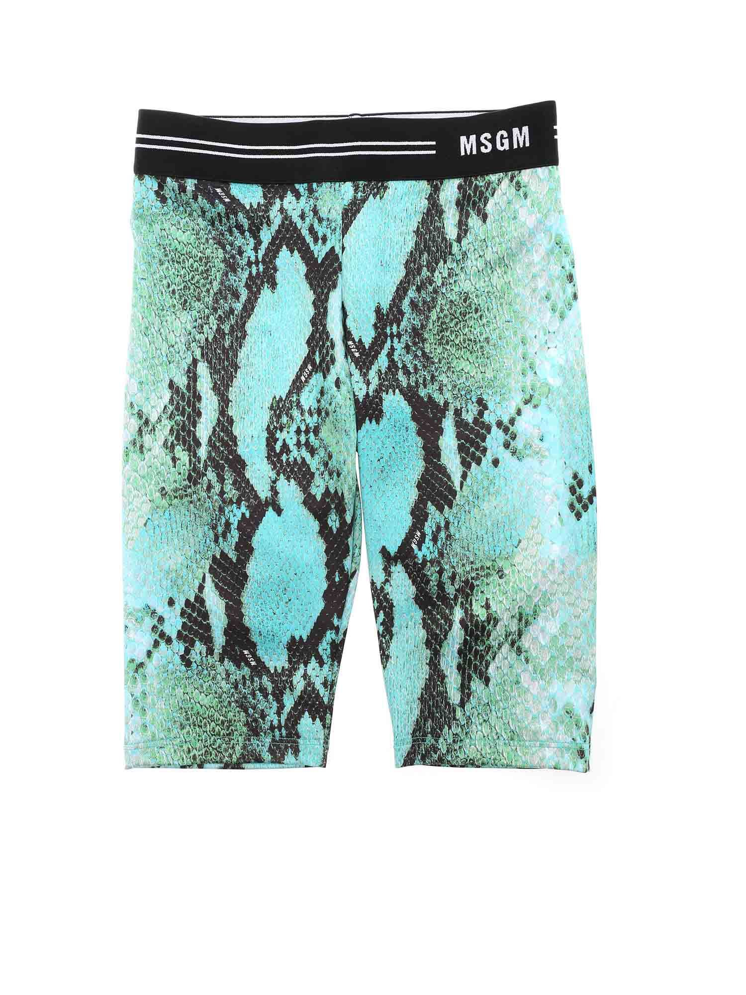 Msgm REPTILE PRINT LEGGINGS IN LIGHT BLUE