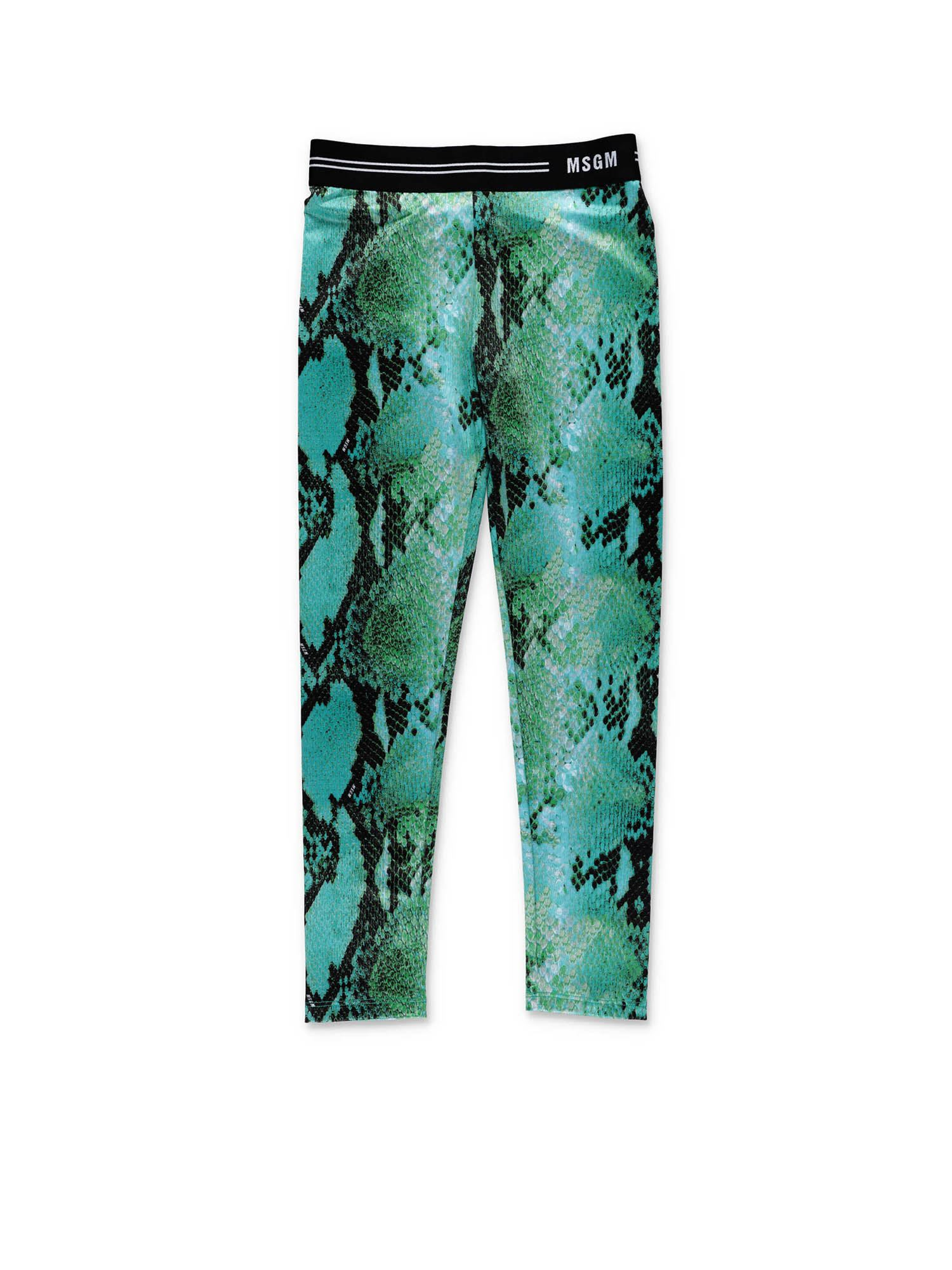 Msgm GREEN SNAKE LEGGINGS