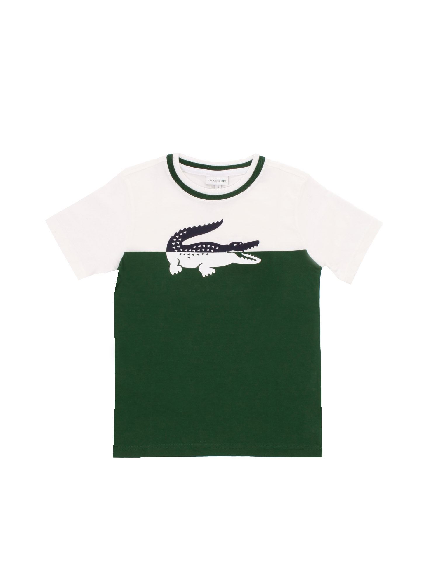 Lacoste LOGO PRINT T-SHIRT IN WHITE AND GREEN