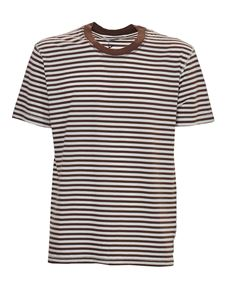 Grifoni - Striped T-shirt in brown and white