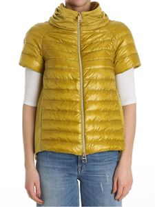 Herno - Short sleeve down jacket